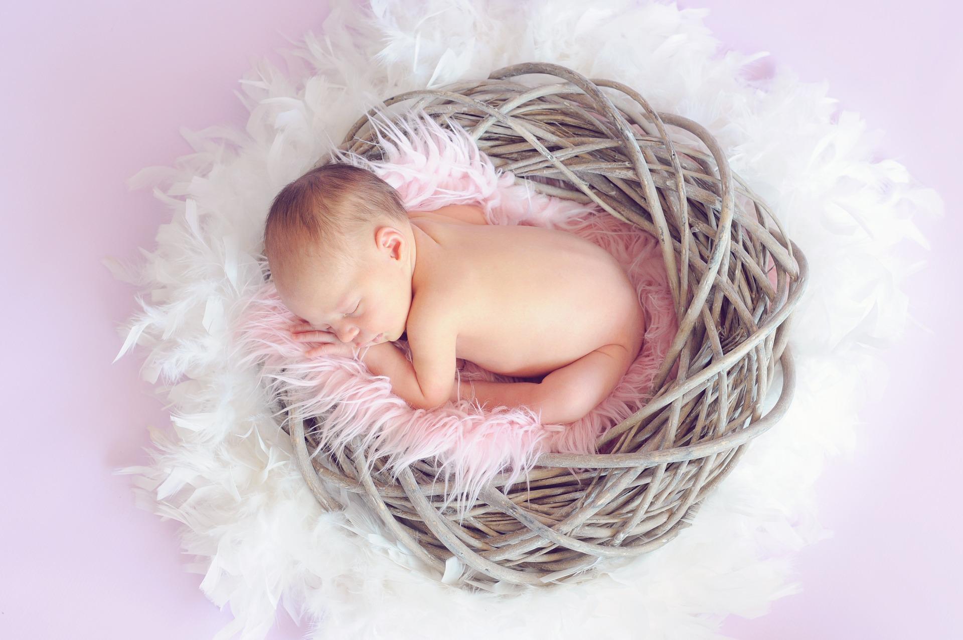 kojenie