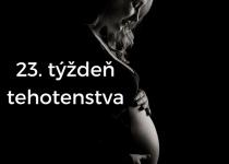 23. týždeň tehotenstva