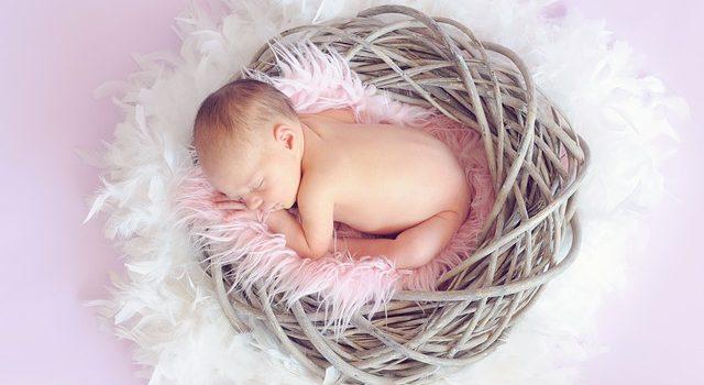 detské hniezdo